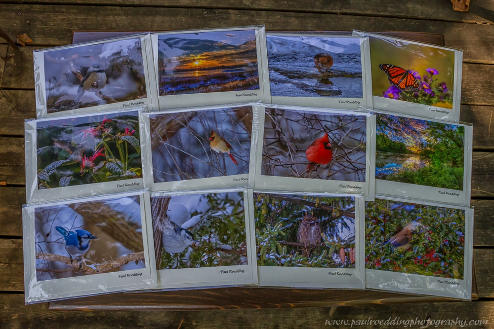 Handmade art cards featuring some of my most popular images are available at area shops.